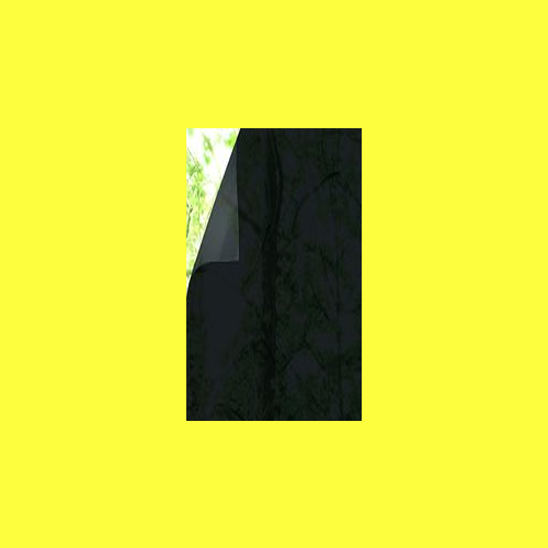 Darkest Tint(2)